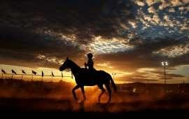 australian-rodeo-2