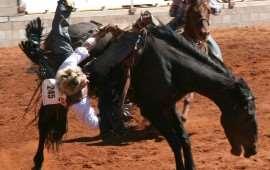 australian-rodeo-3