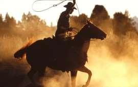 rodeo-in-australia-2