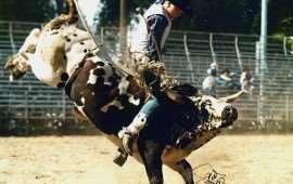 rodeo-in-australia