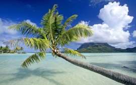 Tropical_Escape_Bora_Bora_French_Polynesia