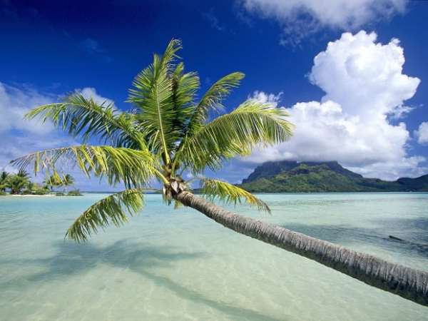 Tropical_Escape_Bora_Bora_French_Polynesia