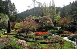 Butchart-Gardens-Sunken-Garden-01 (1)