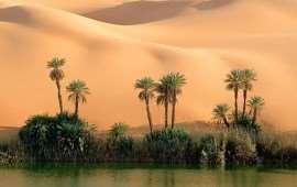 Путевки в Сусс – путешествие в сердце пустыни