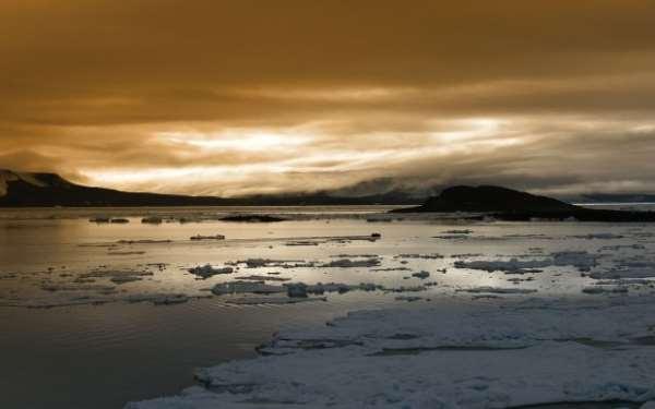 Тайны арктики