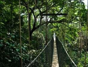 Национальный парк «таман негара», Малайзия