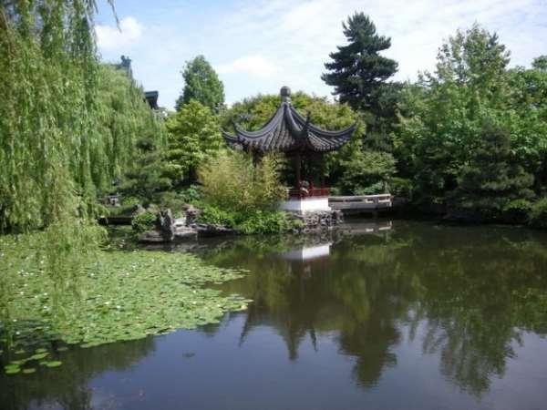 Китайский садик в Петергофе