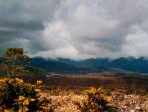 Тасмания. Природа острова