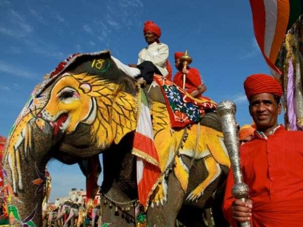 Индия слоны