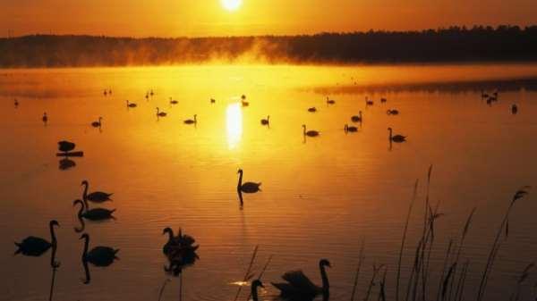 Страна тысячи озер