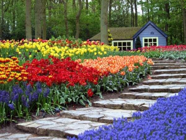 Цветочный парк Кёкенхоф