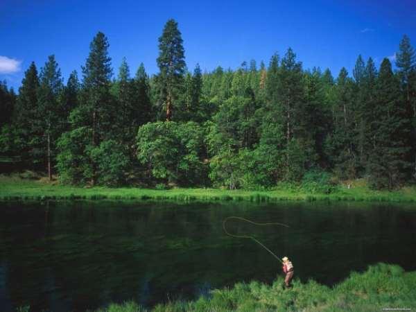 рыбалка на волге на щуку