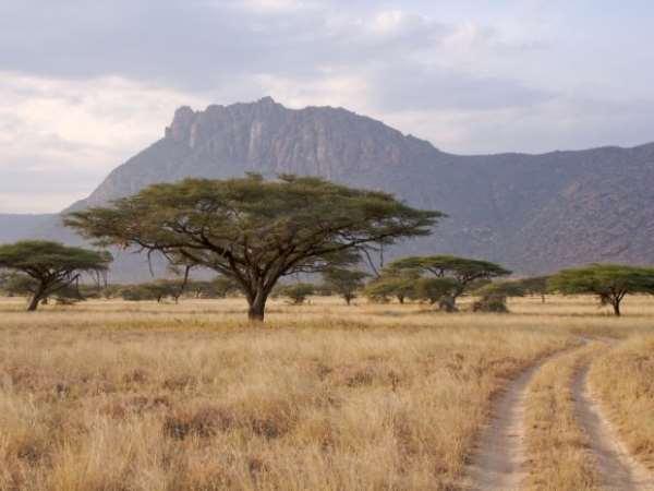 заповедники Кении