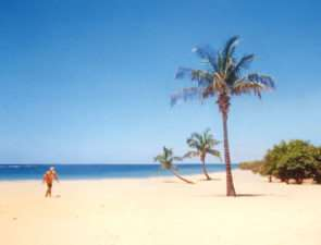 Незабываемый отдых на пляжах Гоа