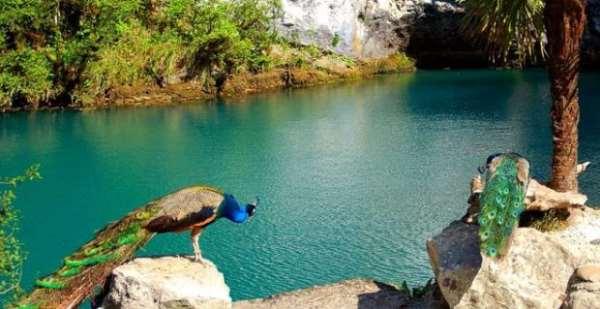 Путешествие в Абхазию альтернатива курортам Европы