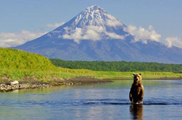 Туры на Камчатку – разнообразие вариантов