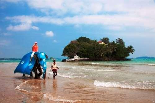 Популярные туристические направления Шри-Ланки