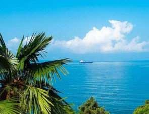 Отдых в Сочи: солнце, море и чистые пляжи