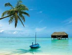 Незабываемый пляжный отдых в Шри-Ланке