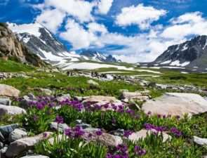 Несколько важных причин поехать на Алтай весной