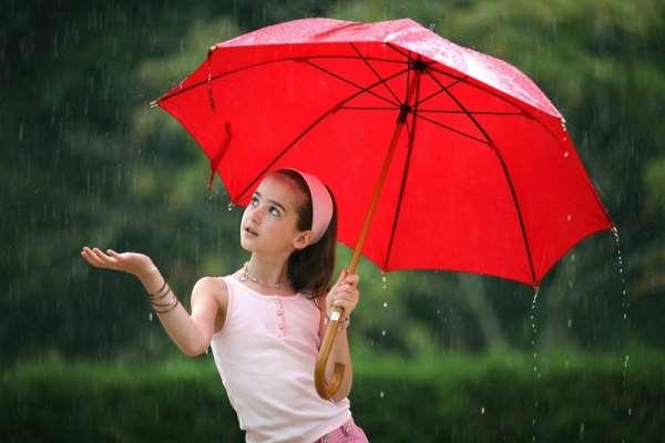 По каким критериям выбирать зонтик