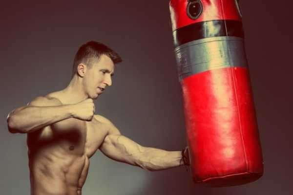 Боксерская груша – снаряд, необходимый каждому боксеру
