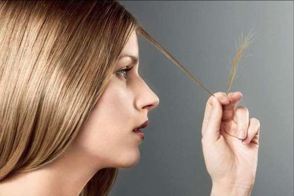 Секутся кончики – как правильно ухаживать за волосами