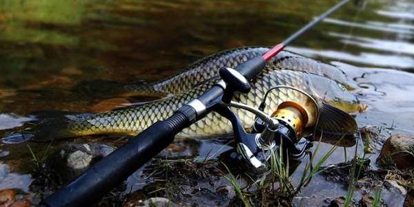 Выбираем прочную и удобную леску для рыбалки