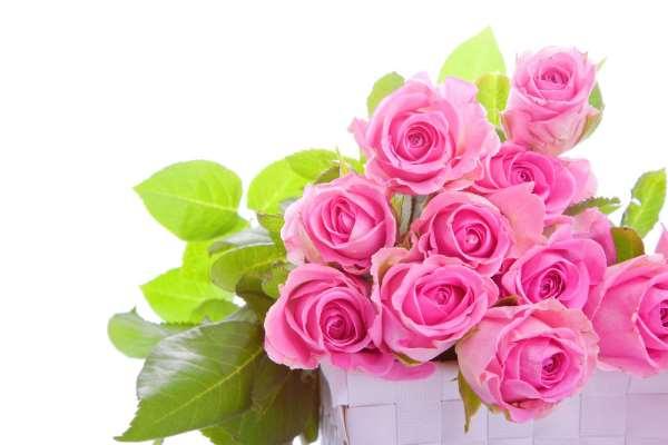 Профессиональная доставка цветов по Харькову работает без сбоев
