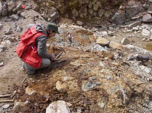Что дает разведка месторождений полезных ископаемых?
