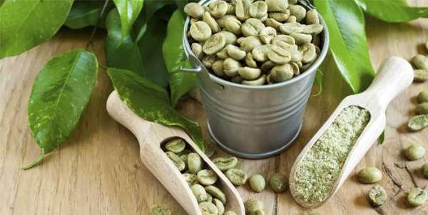 Оптовые поставки зеленого кофе по России и СНГ