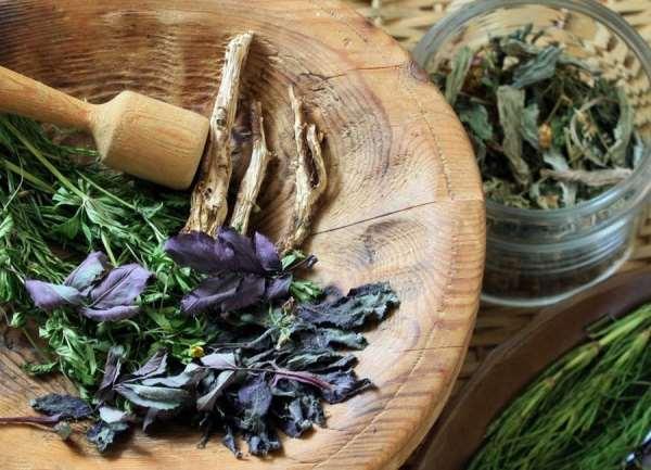 Алтайские травы и лечебные сборы по доступным ценам