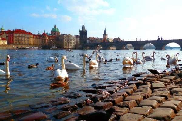 Интересные выездные экскурсии из Праги в другие страны Европы