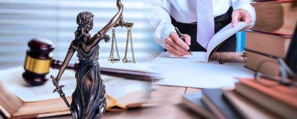 Профессиональные юридические услуги опытного спеца