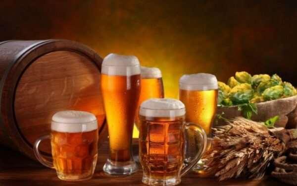 Вкусное и полезное живое пиво по доступной цене