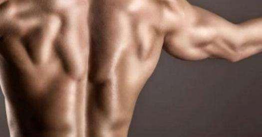 Комфортные упражнения для мышц спины