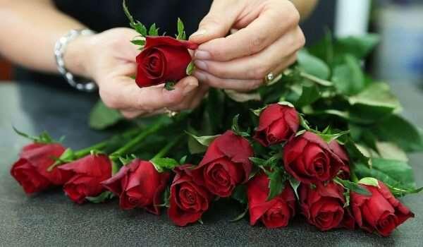 Как сохранить букет цветов как можно дольше